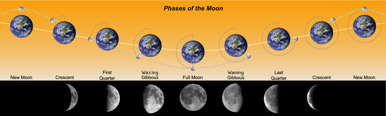 Phases_of_the_Moonpng